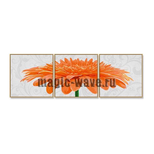 Хризантема крупноцветковая оранжевая
