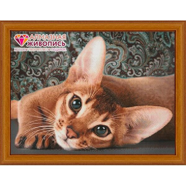 Алмазная вышивка Абиссинская кошка