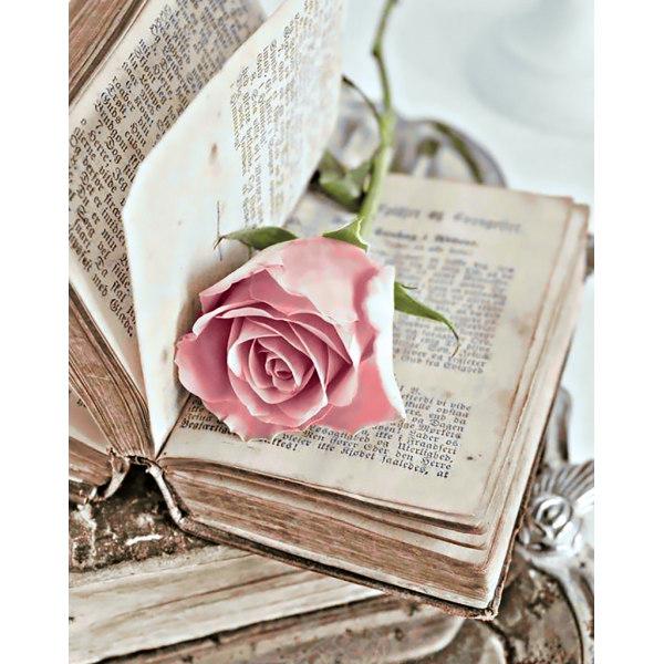 Алмазная вышивка Любовный роман