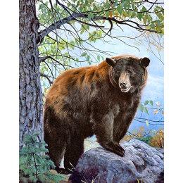 Алмазная вышивка Бурый медведь