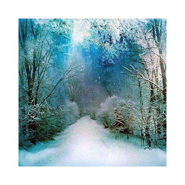 Алмазная вышивка Снежный путь