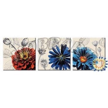 Пышноцветы
