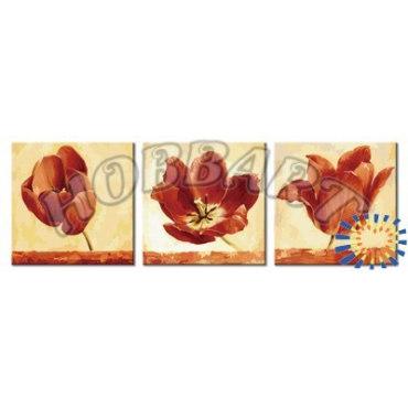 Страстные тюльпаны